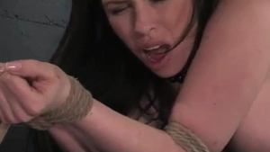 Bimbo whore Daphne Rosen has a soft spot for BDSM HD